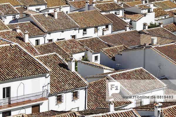 Dach Stadt weiß Ignoranz Andalusien Grazalema Spanien