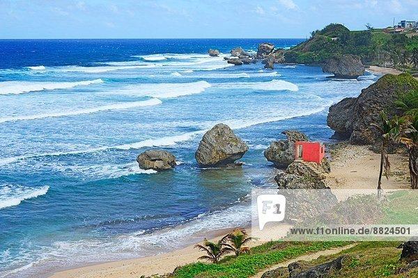 Strand  Ozean  Norwegen  Karibik  Barbados  Atlantischer Ozean  Atlantik  Kreuzfahrtschiff  Antillen  Sonne