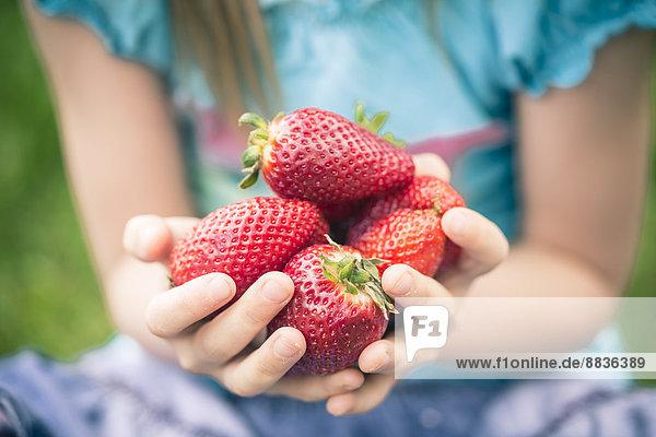Kleines Mädchen hält eine Handvoll Erdbeeren  Teilansicht