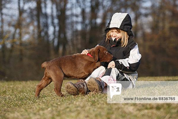 Mädchen sitzt auf einer Wiese und spielt mit einem Labrador-Welpen.