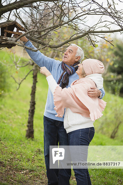 Senior couple watching a bird house