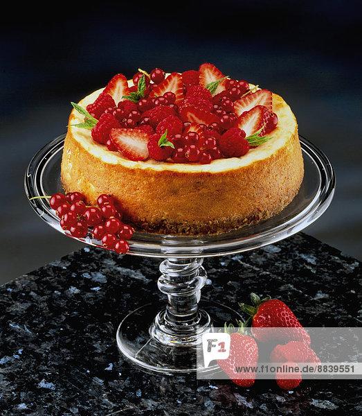 Glas schwarzer Hintergrund rot Erdbeere Kuchenplatte Johannisbeere Käsekuchen
