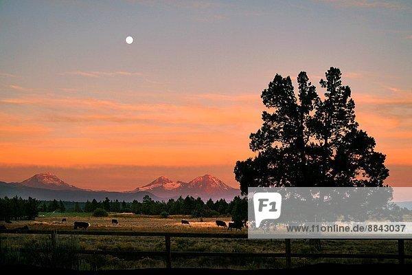 USA  Oregon. Three Sisters Mountains from Tumalo  near Bend.