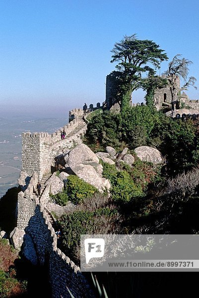 The MOORISH CASTLE of SINTRA dates back to the 8th century and is located a few hours drive from LISBON  PORTUGAL