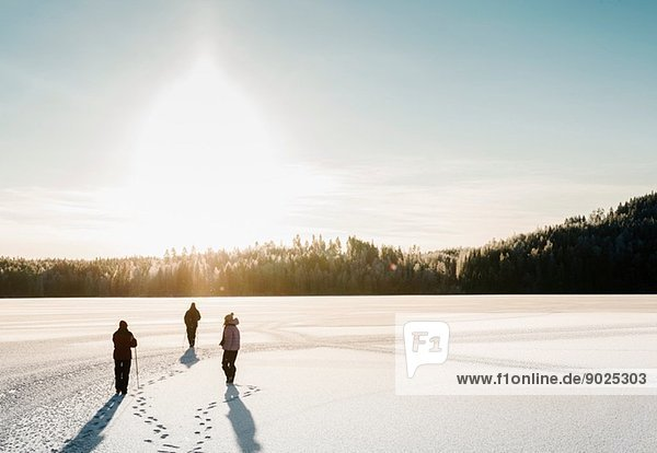 Three people nordic walking through snow covered field