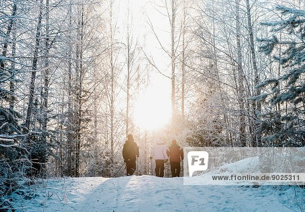Three people nordic walking in snow covered forest