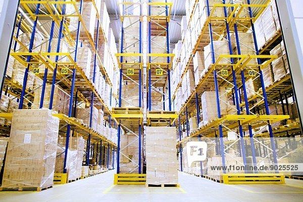 Paletten und Regale im Distributionslager
