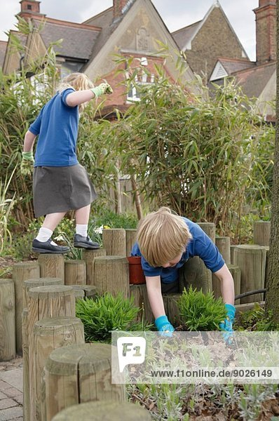 Schuljunge pflanzt im Garten