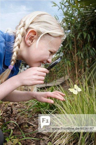Nahaufnahme eines Schulmädchens mit Blick auf den Schmetterling im Garten