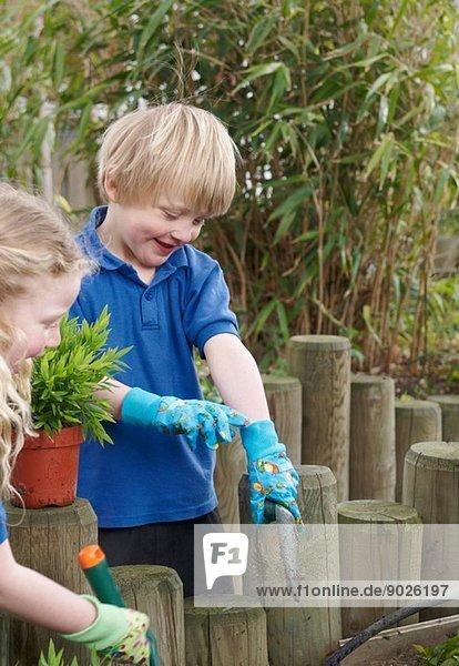 Schuljunge und -mädchen pflanzen im Garten