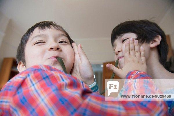 Brüder essen Gummischlange
