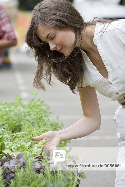 Frau auf einem Markt am Kräuterstand