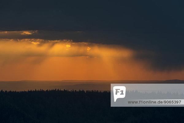 Abendhimmel  Naturschutzgebiet Réserve naturelle du Tanet-Gazon du Faing  Route des Cretes  Vogesen  Le Valtin  Lothringen  Frankreich