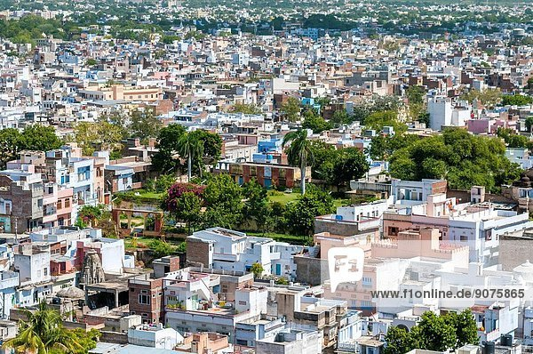 View from City Palace  Udaipur  Rajasthan  India.