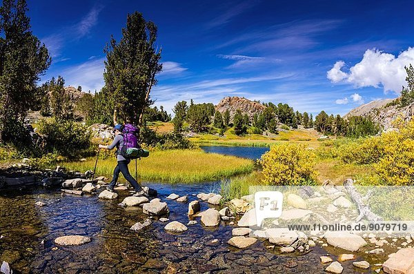 Backpacker crossing a stream on the Bishop Pass Trail  John Muir Wilderness  Sierra Nevada Mountains  California USA.