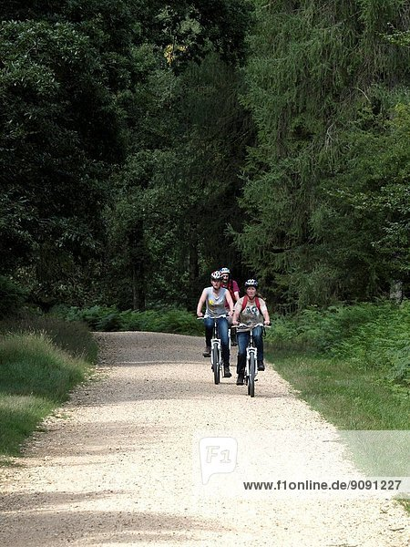 Cycling in Bolderwood Park,  New Forest,  Hampshire