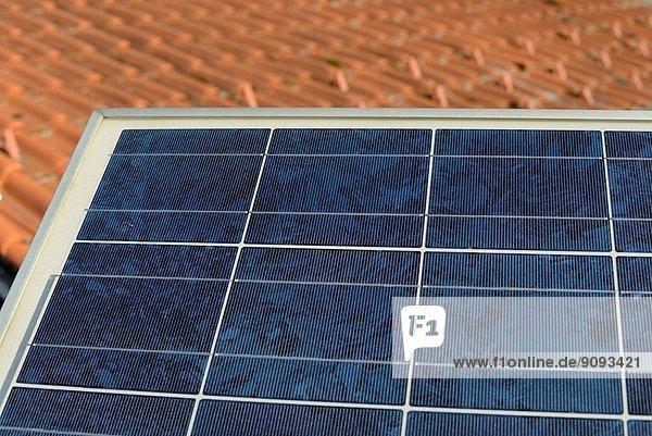Dach Energie energiegeladen Wohnhaus Pflanze Sonnenenergie Mittelpunkt Ar August Deutschland Dach,Energie,energiegeladen,Wohnhaus,Pflanze,Sonnenenergie,Mittelpunkt,Ar,August,Deutschland