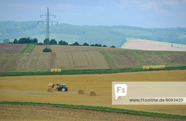 Bales of straw laying on a field in Germany.