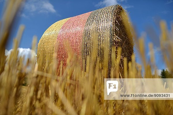 Bales of straw in the colours of the german national flag are laying on a field in Germany.