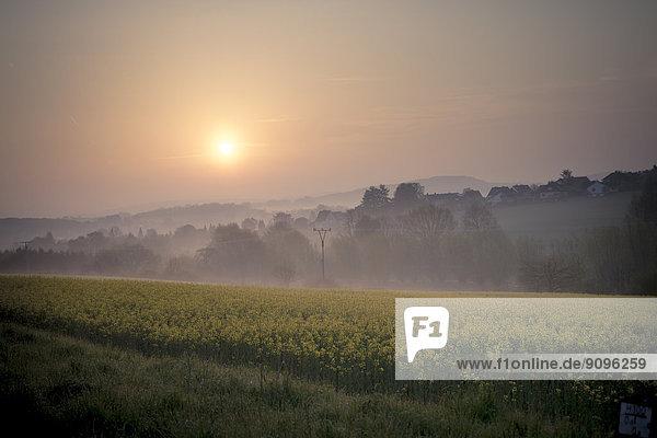 Deutschland  Nordrhein-Westfalen  Detmold  Teutoburger Wald  Sonnenaufgang