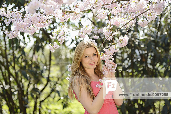 Young woman at blooming cherry tree  portrait
