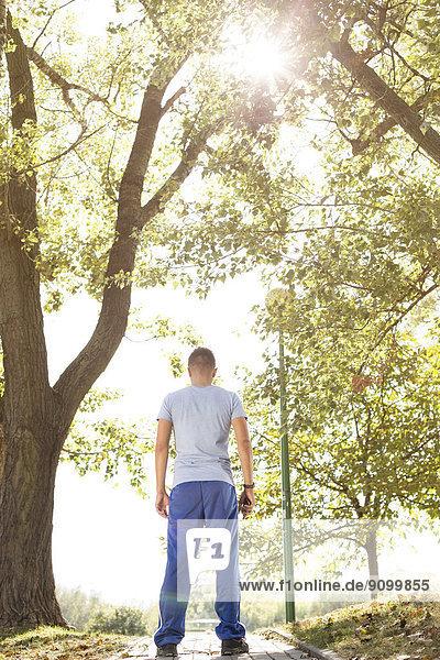 stehend  Mann  Sport  Weg  Rückansicht  Ansicht  Länge  voll  Feldweg