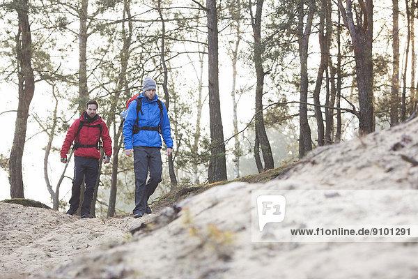Wald  wandern  jung  Backpacker