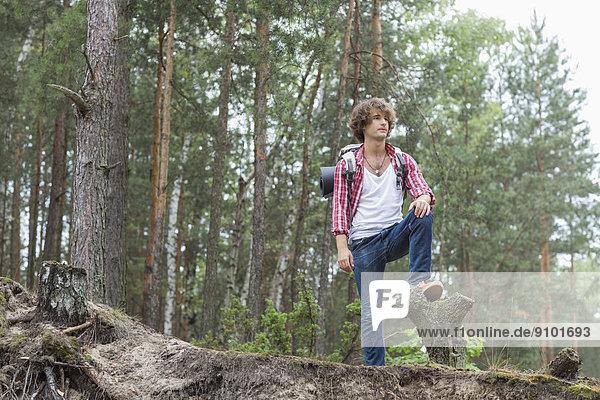 stehend  Wald  Rucksackurlaub  Länge  voll