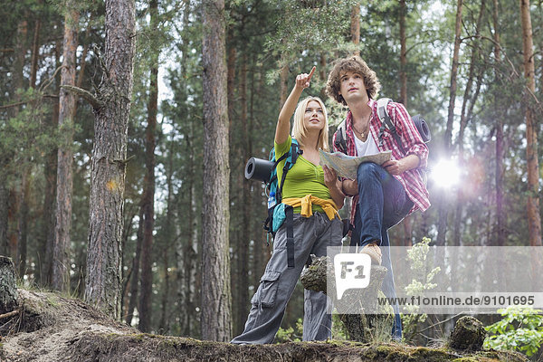 Diskussion  Richtung  über  Wald  Landkarte  Karte  wandern  jung