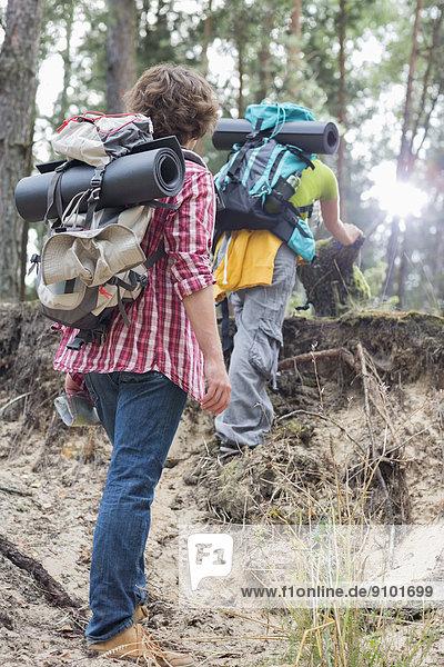 Mann  sehen  Steilküste  Wald  wandern  Rückansicht  Ansicht  klettern