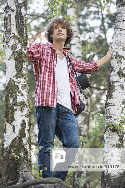 stehend  Wald  wandern  jung