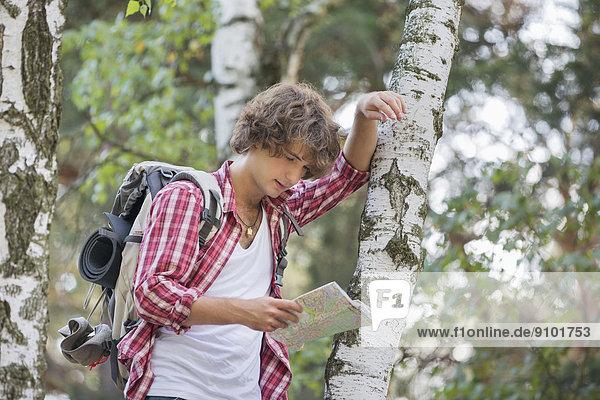 angelehnt  Baum  Wald  Rucksackurlaub  Landkarte  Karte  Baumstamm  Stamm  vorlesen