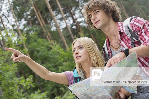Diskussion  Richtung  über  Wald  Landkarte  Karte  wandern