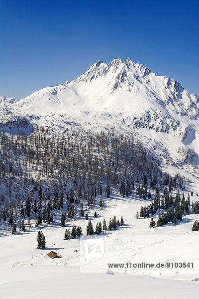 Mondscheinspitze Mountain in winter  Karwendel Mountains  Tyrol  Austria