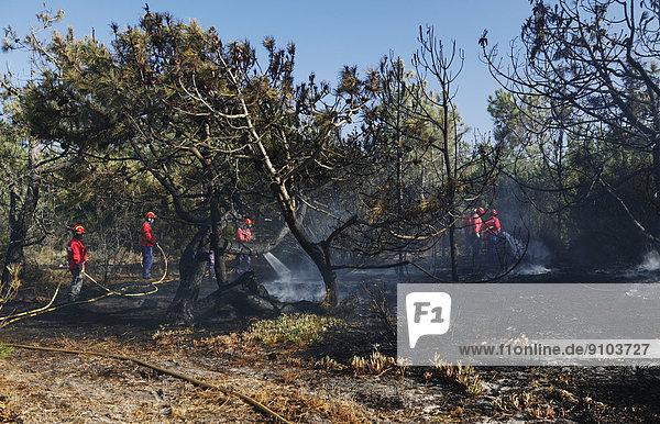 Feuerwehr löscht einen Buschbrand  bei Melides  Region Alentejo  Portugal