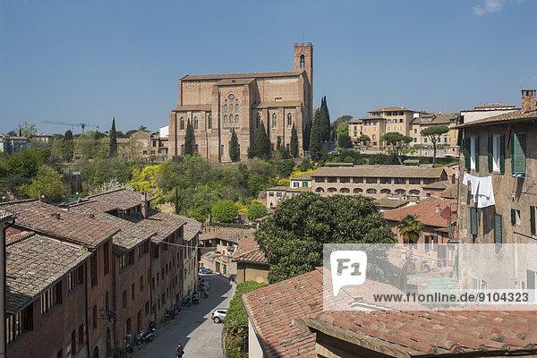 Basilica di San Domenico  vorne die Straße Via Fontebranda  Siena  Toskana  Italien
