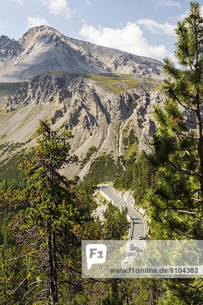 Ofenpassstrasse B 28  hinten der Berg Piz Daint  Schweizerischer Nationalpark  Graubünden  Schweiz Ofenpassstrasse B 28, hinten der Berg Piz Daint, Schweizerischer Nationalpark, Graubünden, Schweiz