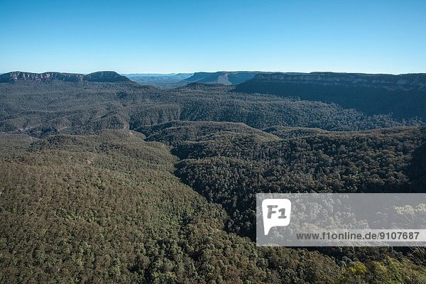 Blick auf den Blue Mountains National Park  New South Wales  Australien