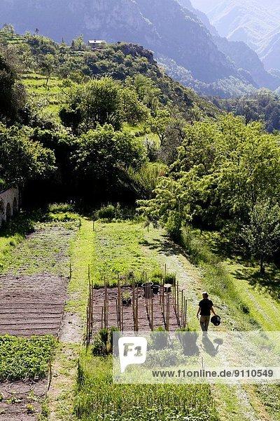 Frankreich  Schriftsteller  Monument  Provence - Alpes-Cote d Azur  Wunder  Mönch  Kloster