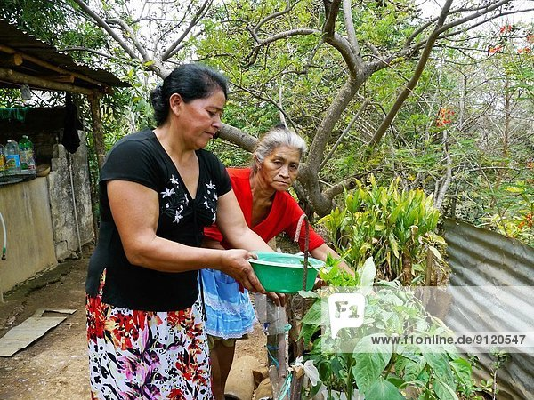 Wasser Gemüse schwarz Hemd Garten rot El Salvador Freund Zuhause von