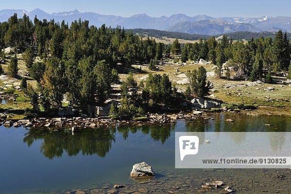 Vereinigte Staaten von Amerika  USA  Landschaftlich schön  landschaftlich reizvoll  Berg  Reise  vorwärts  Nebenstraße  Wyoming