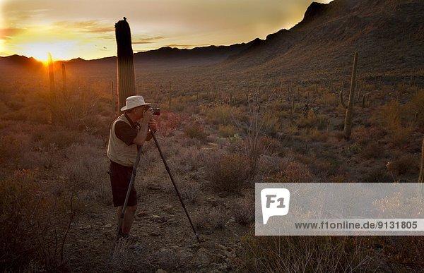 Vereinigte Staaten von Amerika  USA  Sonnenuntergang  Arizona  Fotografie