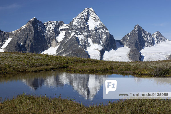 Berg  Spiegelung  British Columbia  Kanada  Glacier Nationalpark  Selkirk Mountains  Tarn