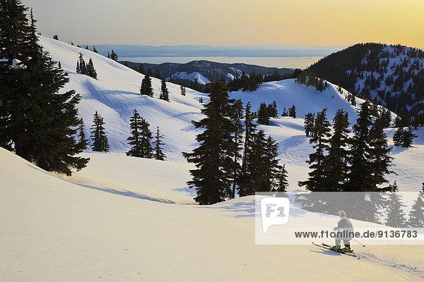 Sonnenstrahl  Skifahrer  Küste  absteigen  Ländliches Motiv  ländliche Motive  unterhalb  britisch  Kanada  Hang