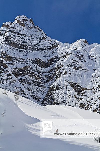 Ski  Skifahrer  Tag  Gesichtspuder  unbewohnte  entlegene Gegend  Entdeckung  Berghüttensänger  Sialia currucoides  Banff Nationalpark  Glocke  tief