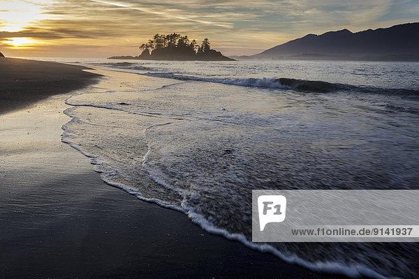 waschen  Küste  Hintergrund  Insel  Ländliches Motiv  ländliche Motive  Clayoquot Sound  Flores  Sonne  Walfänger