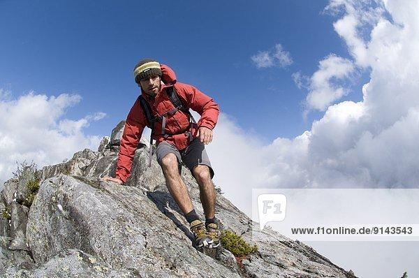 Berg  folgen  wandern  Fasan  Phasianus colchicus  Vancouver  British Columbia  Kanada  Krone