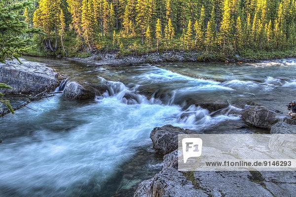 Landschaftlich schön  landschaftlich reizvoll  Elbow Falls  Kananaskis Country  Alberta  Kanada