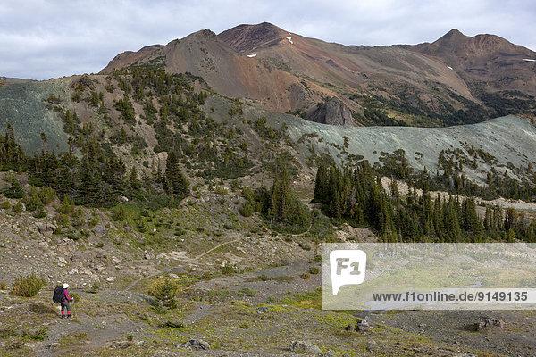 entfernt  Berg  folgen  Berggipfel  Gipfel  Spitze  Spitzen  wandern  Coast Chilcotin  unterhalb  British Columbia  Kamel  Kanada