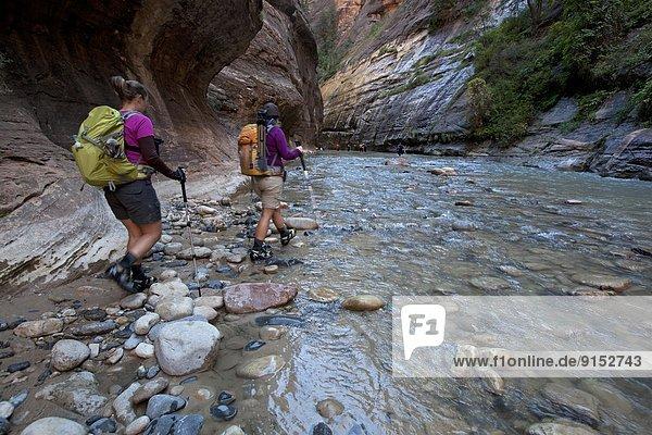Vereinigte Staaten von Amerika  USA  Zion Nationalpark  Utah